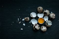 Fresh quail eggs food background. Fresh Quail eggs and shell on dark moody background Royalty Free Stock Images