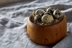 Fresh quail eggs in a wooden bowl on a dark wooden background, top view, close-up. Some copy space for your inscription. Textured background emphesize the stock images