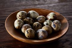 Fresh quail eggs in a wooden plate on a dark wooden background, top view, close-up. Some copy space for your inscription. Textured background emphesize the Royalty Free Stock Photography