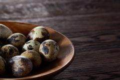 Fresh quail eggs in a wooden plate on a dark wooden background, top view, close-up. Some copy space for your inscription. Textured background emphesize the stock photos