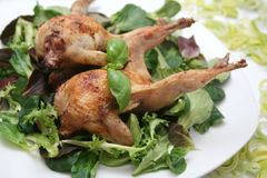 Fresh quails. Two fresh quails on a plate with mixed salad Royalty Free Stock Photography