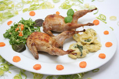 Fresh quails. With salad and spinach noodles Royalty Free Stock Images