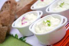 Fresh quark. Some fresh quark with onions and spices Royalty Free Stock Image