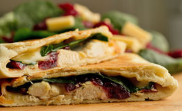 Fresh quesadilla. Chicken, cranberry, spinach and gouda cheese quesadilla Stock Photos