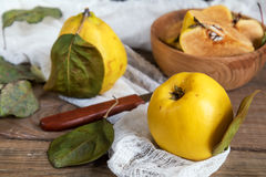 Fresh quince fruit on dark wooden table. The fresh quince fruit on dark wooden table. An autumn still life Stock Image