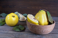 Fresh quince fruit on dark wooden table. The fresh quince fruit on dark wooden table. An autumn still life Royalty Free Stock Photos