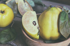 Fresh quince fruit on dark wooden table. The fresh quince fruit on dark wooden table. An autumn still life. Coloring and processing photo Stock Photo