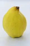 Fresh quince Royalty Free Stock Photography