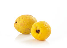 Fresh quinces. On white background Stock Photo