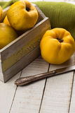 Fresh quinces. In box on white table. Selective focus. Rustic style Royalty Free Stock Image