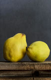 Fresh quinces. Two fresh quinces on wooden background. Dark and moody atmosphere Royalty Free Stock Photos
