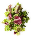 Fresh radicchio and green lettuce mix isolated on white background Stock Images