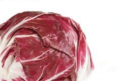 Fresh Radicchio Head. Fresh head of radicchio with it's deep red white veined radicchio leaves Stock Photos