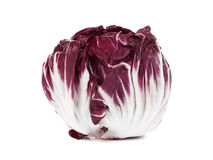 Fresh radicchio isolated on white. Fresh red radicchio salad head isolated on white Royalty Free Stock Photos