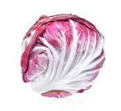 Fresh radicchio red salad isolated on white background Royalty Free Stock Photography