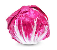 Fresh radicchio red salad isolated on white background Stock Photos