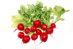Fresh radish. Isolated on white background Stock Photo