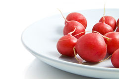 Fresh radish. On a blue plate isolated over white Royalty Free Stock Images