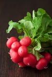 Fresh radish Stock Photography