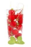 Fresh radish Stock Images