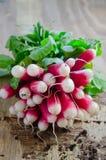 Fresh Radish. Closeup shot of fresh radish Royalty Free Stock Photos