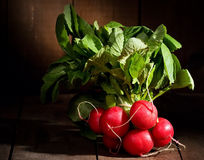 Fresh radish Royalty Free Stock Image