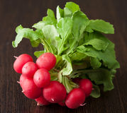 Fresh radish. Closeup shot of fresh radish Royalty Free Stock Image