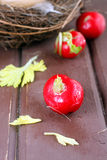Fresh radish. And eggs in the nest Royalty Free Stock Images