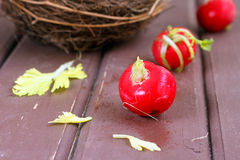 Fresh radish. And eggs in the nest Stock Images