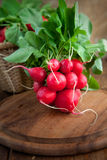 Fresh radish. Vegetable background. Fresh radish on wood Royalty Free Stock Images