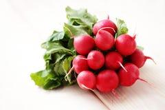 Fresh radish Royalty Free Stock Images