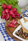 Fresh radish. And salt and pepper Royalty Free Stock Photos