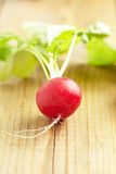 Fresh Radish. On old wooden table Stock Images