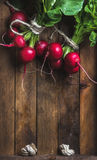 Fresh radish banches on wooden tray background, copy space Stock Photography