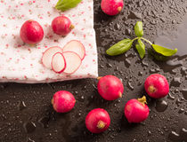 Fresh radish with basil leaf. In a wet background Stock Photo