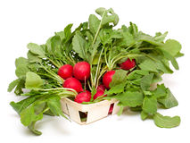 Fresh radish on a basket. On white background Stock Image
