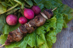 Fresh radish and bbq meat on stick with salad Royalty Free Stock Image
