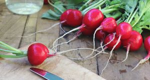 Fresh radish on the Board table. Fresh radishes with tops on wooden table Stock Photography