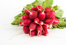 Fresh radish bunch. Fresh delicious radish bunch on the white background Royalty Free Stock Photos