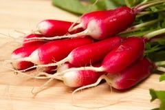Fresh radish. A bunch of freshly picked homegrown radish Stock Photos