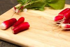Fresh radish. A bunch of freshly picked homegrown radish Stock Images