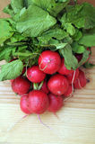 A fresh radish bunch. At market place Royalty Free Stock Photography