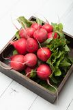 Fresh radish bunch, rustic agriculture background.  stock images