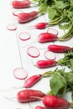 Fresh radish bunch, rustic agriculture background.  royalty free stock photo