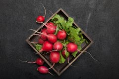 Fresh radish bunch, rustic agriculture background.  stock image