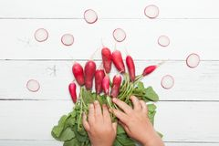 Fresh radish bunch on white wood background, kid hands royalty free stock photos