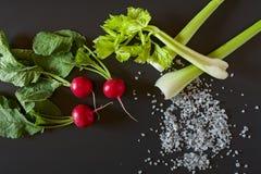 Fresh radish, celery and salt Stock Photo