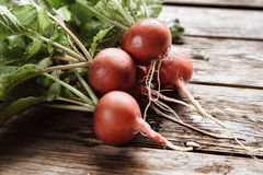 Fresh radish, close-up. Bunch of fresh red radish on wooden background, close-up Stock Images