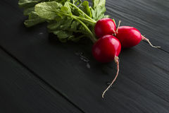 Fresh radish on a dark wooden background.  Stock Photography