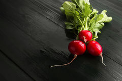 Fresh radish on a dark wooden background. Copy space. Food backg Stock Images